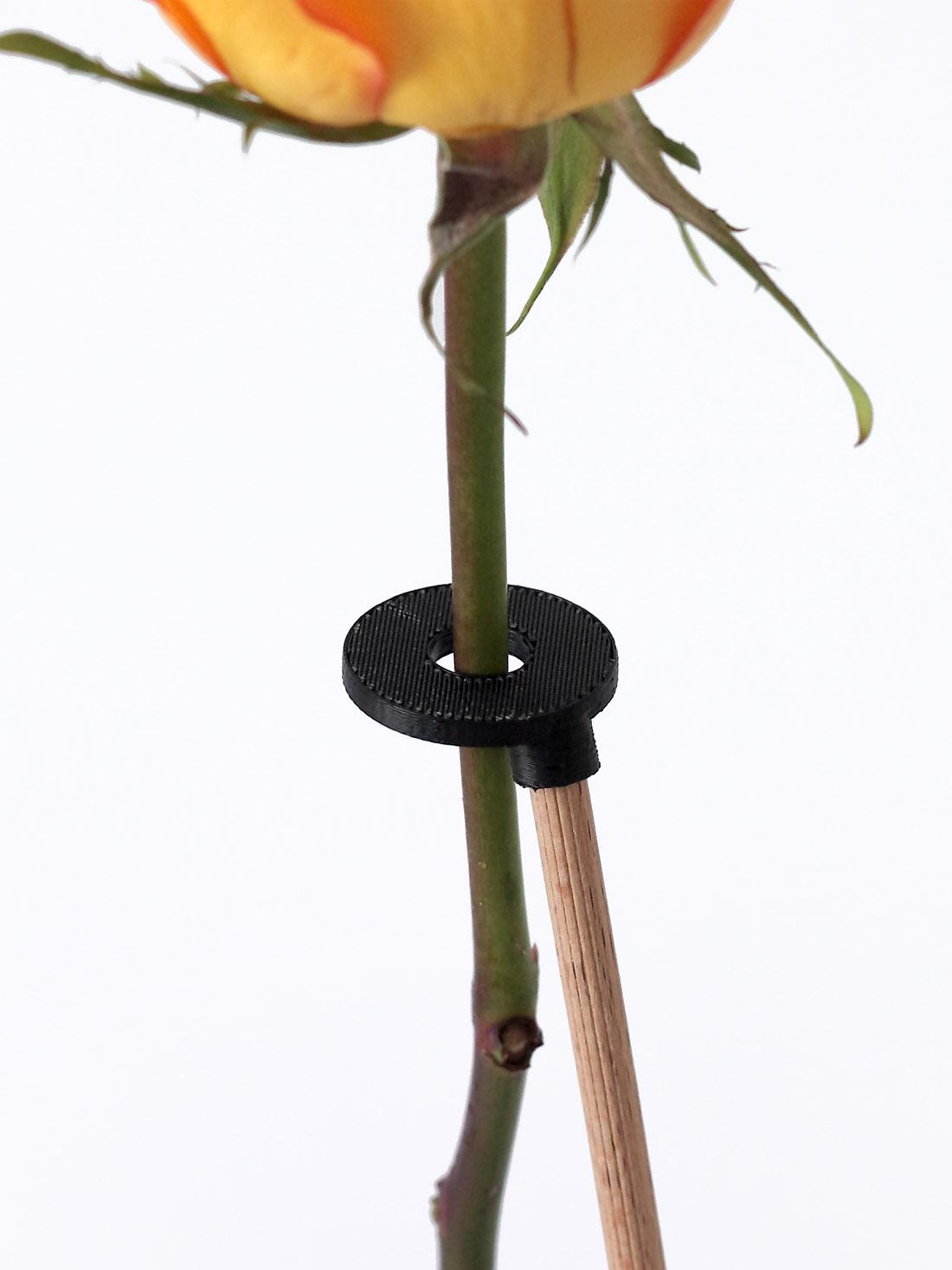 vase malin design complément d'objet